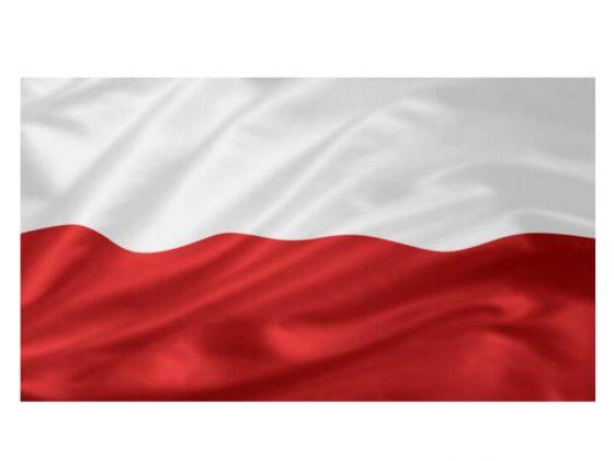 flagaPolska36x24_2