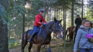 konie33